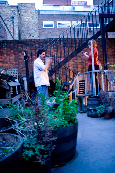 Mit Sous Chef Jon im Gemüsegarten, Acorn House, London