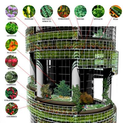 vertcal-farm