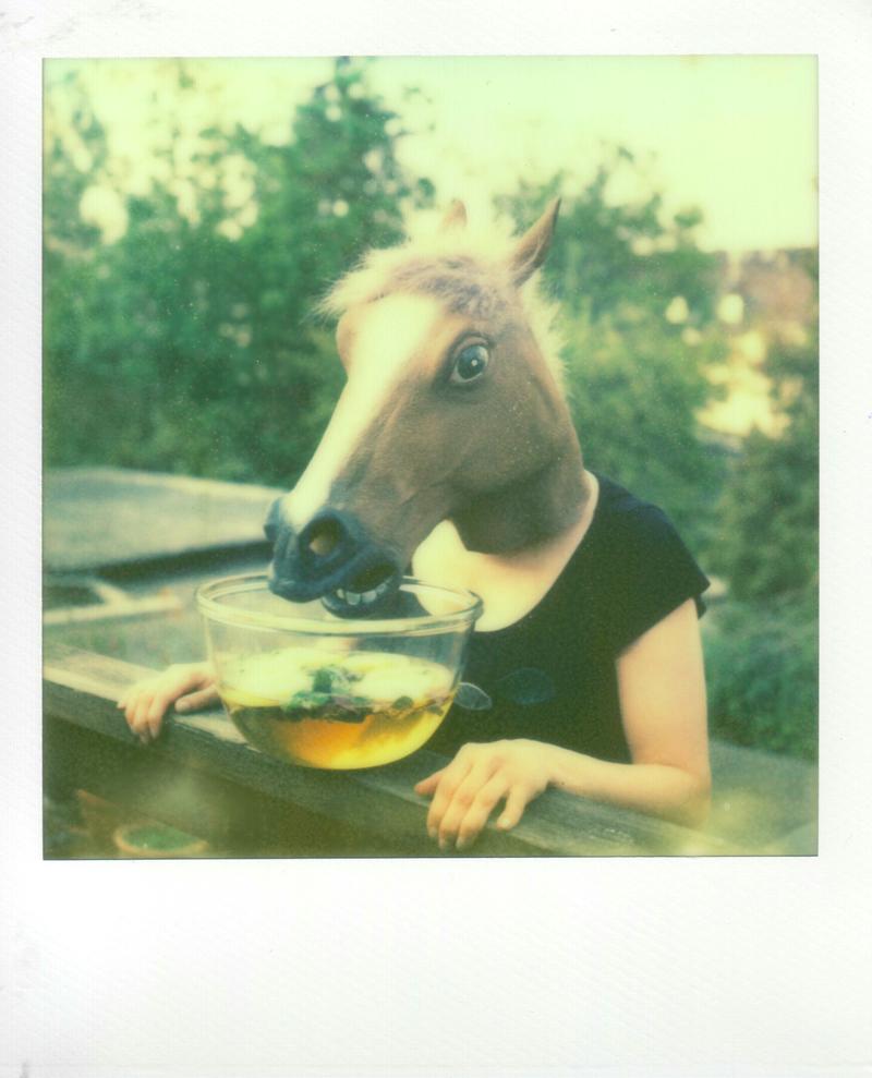 Polaroid: Ina Echternach